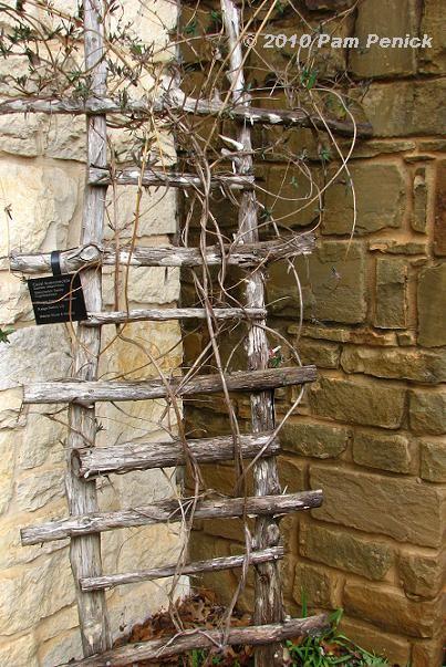 Trellis made of sticks