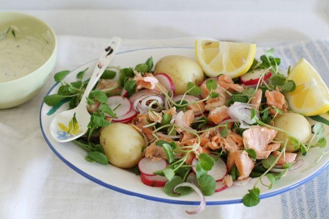 salmon salad