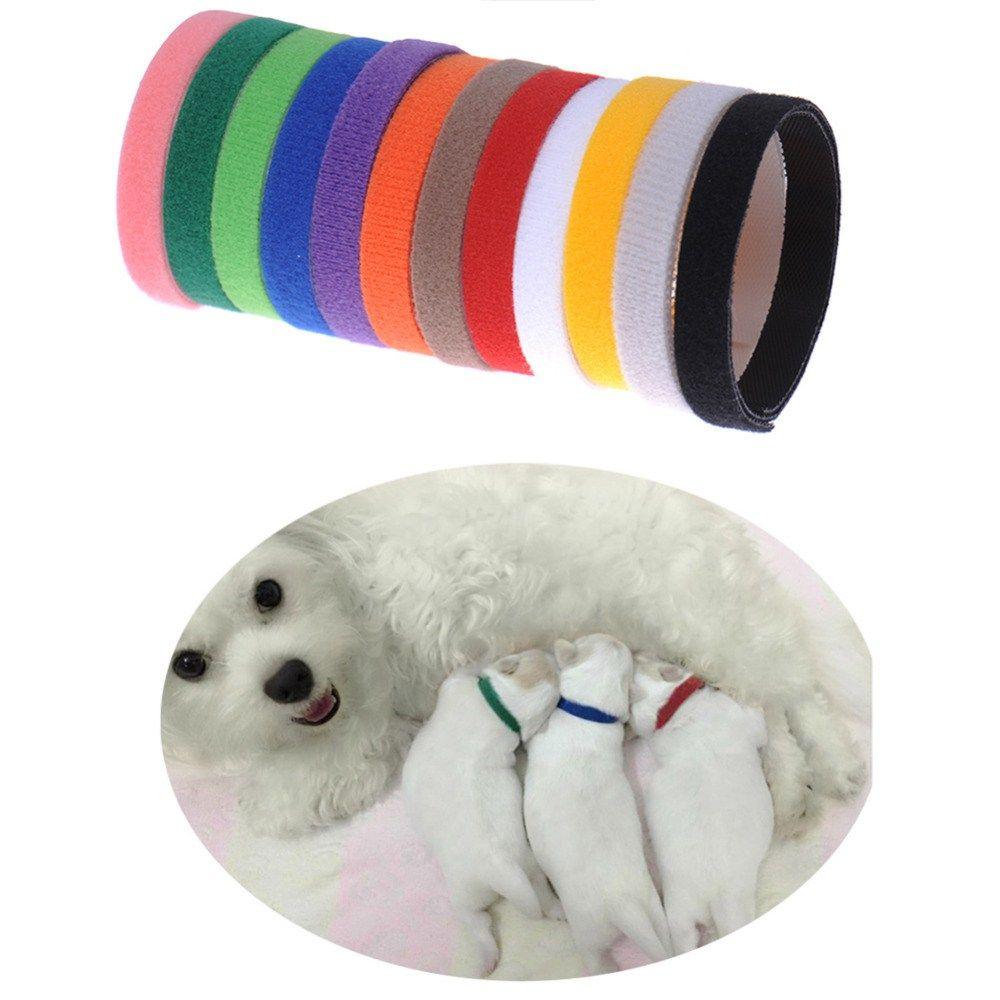12Pcs Puppy ID Identification Collars Adjustable Nylon Small Pet Dog Kitten Multicolor https://t.co/7suNLpLur4 https://t.co/5rEYakoMIQ