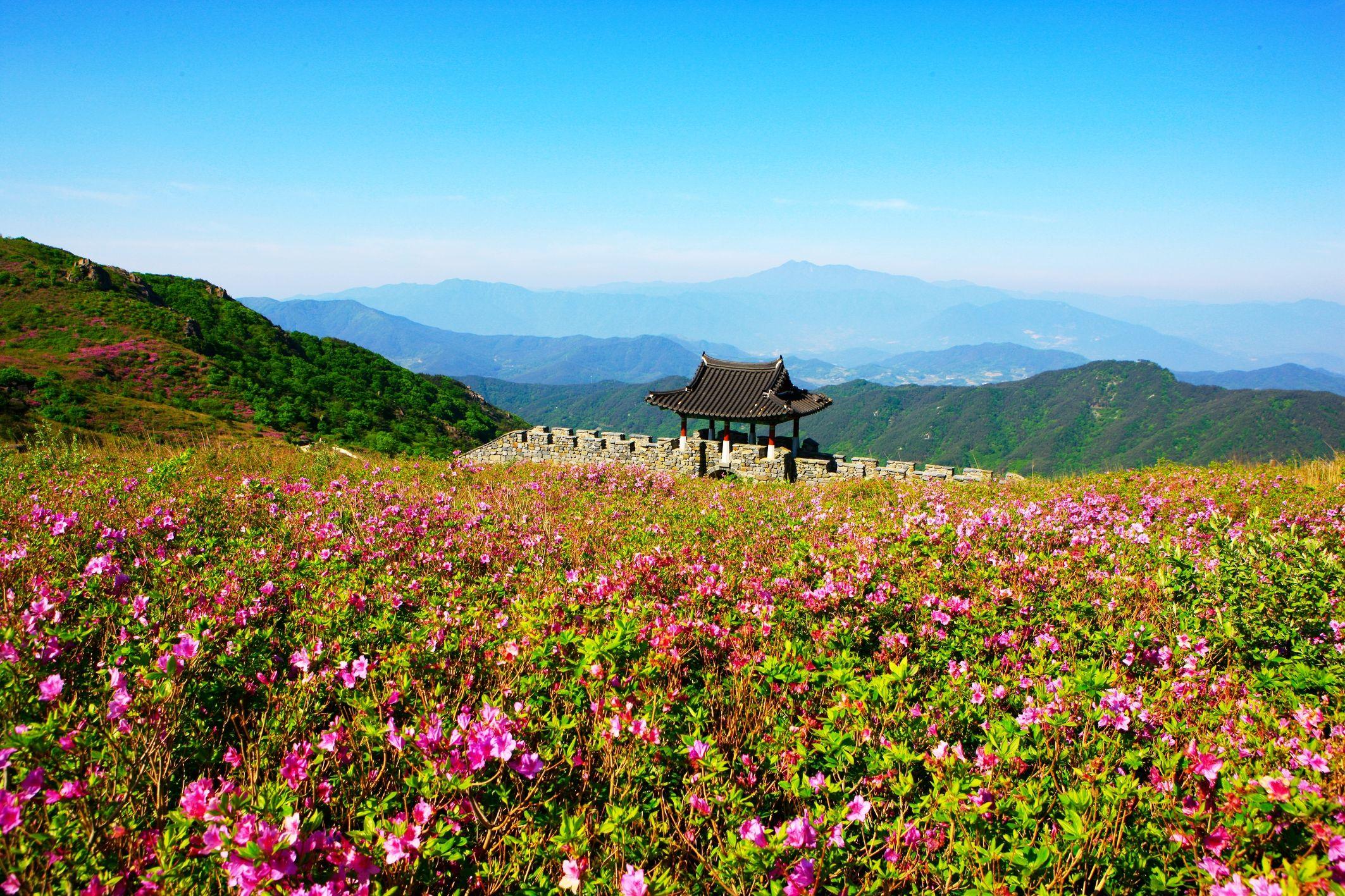 봄 기운이 물씬 풍기는 <황매산 군립공원> (사진_한국관광공사 김지호)