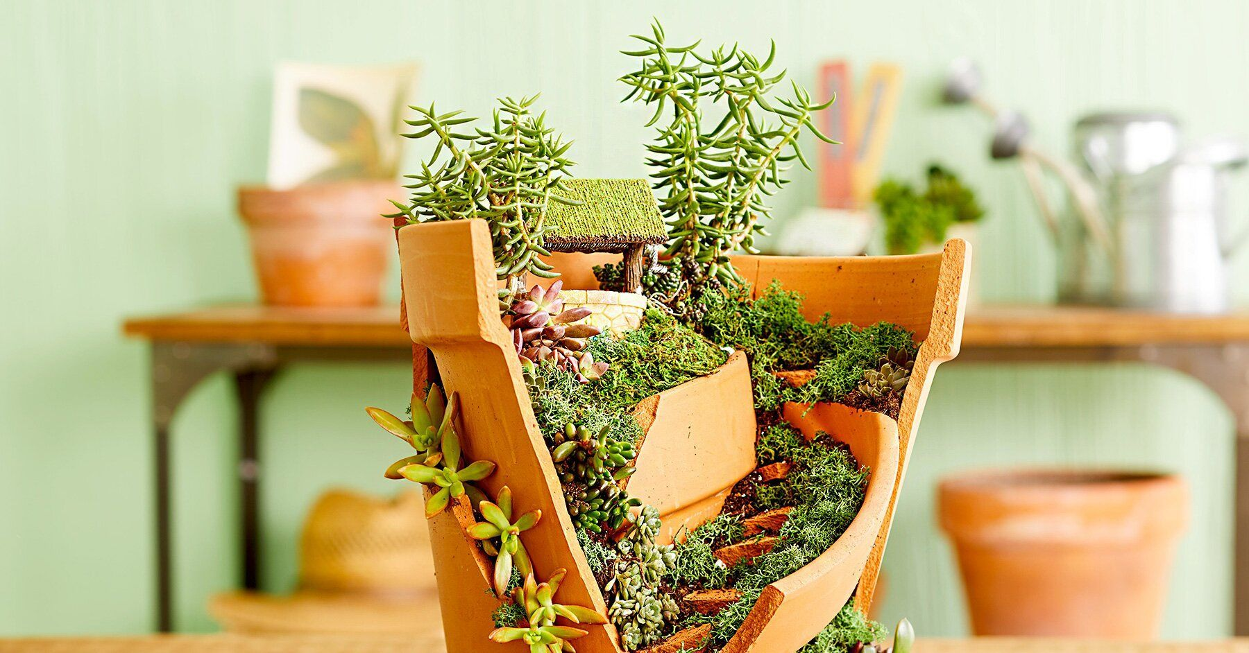 5047003f5205e6225d23b418a53baaf4 - Better Homes And Gardens Potted Plants Ideas