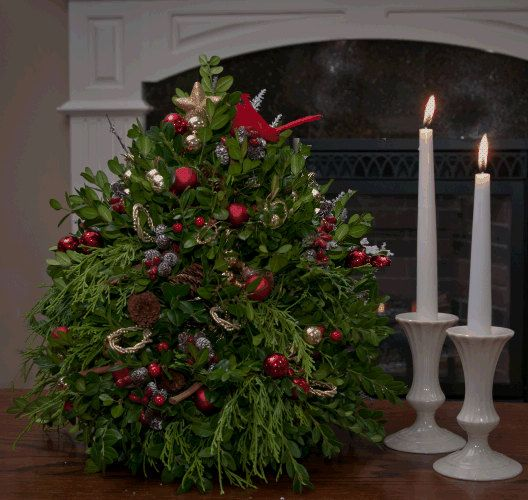 "Christmas Trees Without Ornaments boxwood christmas tree - ""the red cardinal"" boxwood tree (without"