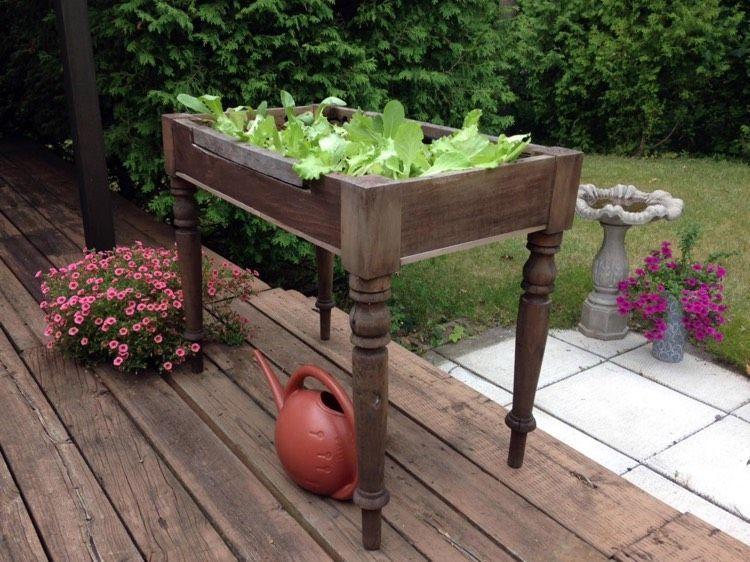 Kleines Tisch Hochbeet Bauen Perfekt Fur Balkon Und Terrasse Gartenbeet Hochbeet Erhohte Beete