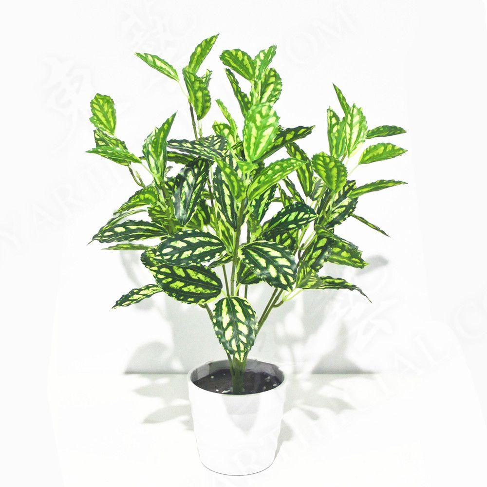 Artificial pilea bunshes 45cm 72 leaves artificial