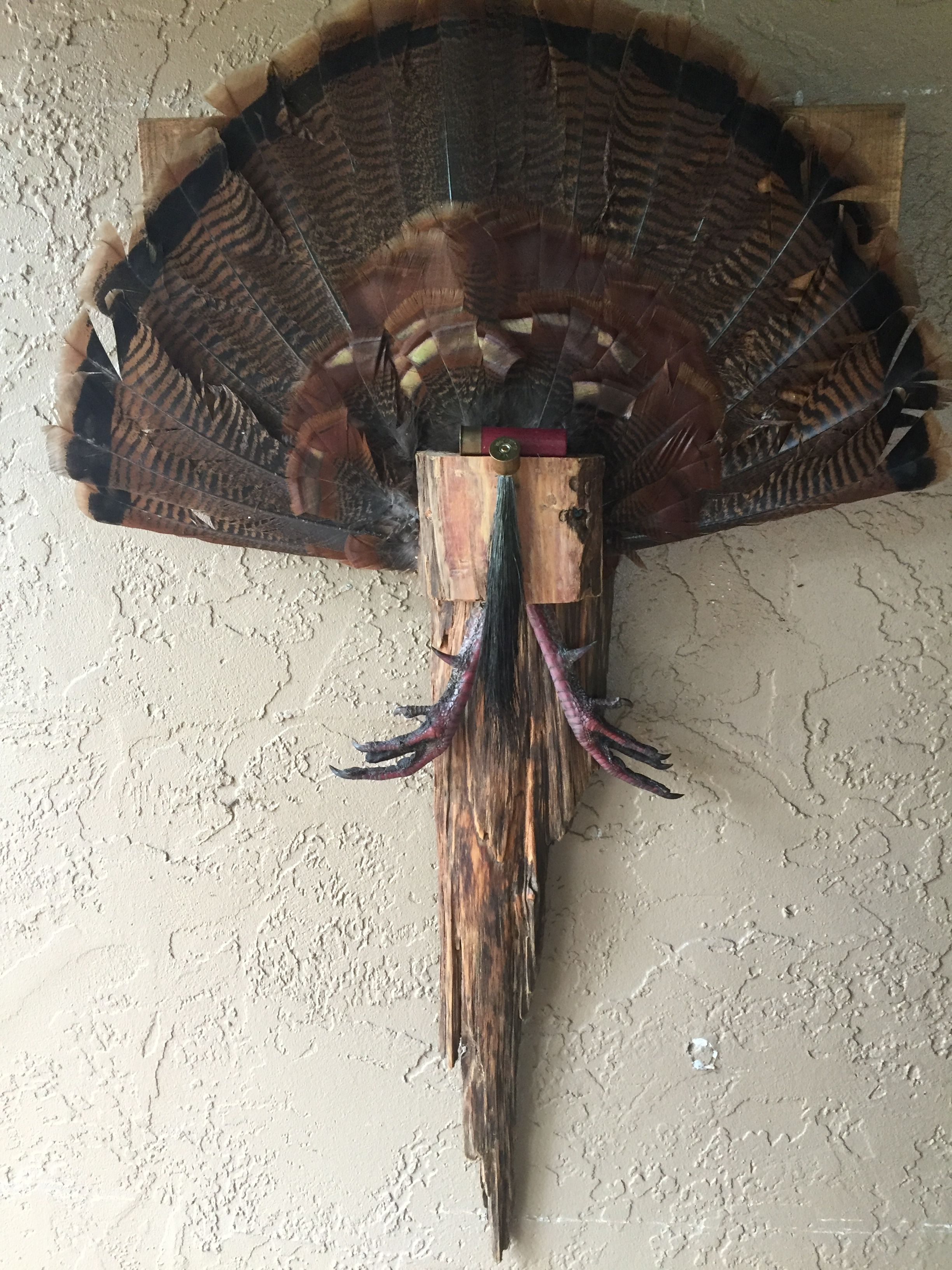 How to make a wooden turkey fan mount