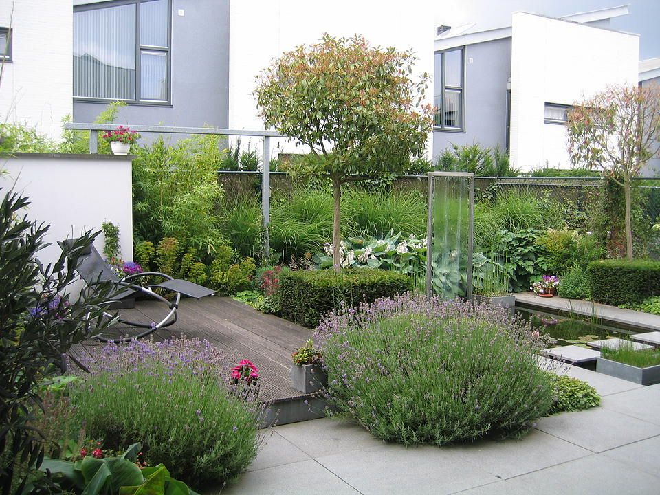 Hoveniersbedrijf Guy Wolfs | Portfolio | Urban garden ...