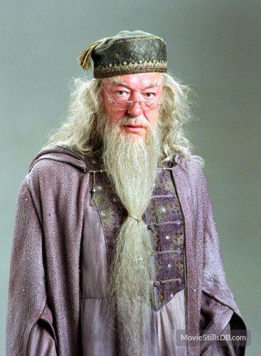 Harry Potter And The Prisoner Of Azkaban Harry Potter Quotes Albus Dumbledore Harry Potter Harry Potter Family Costume