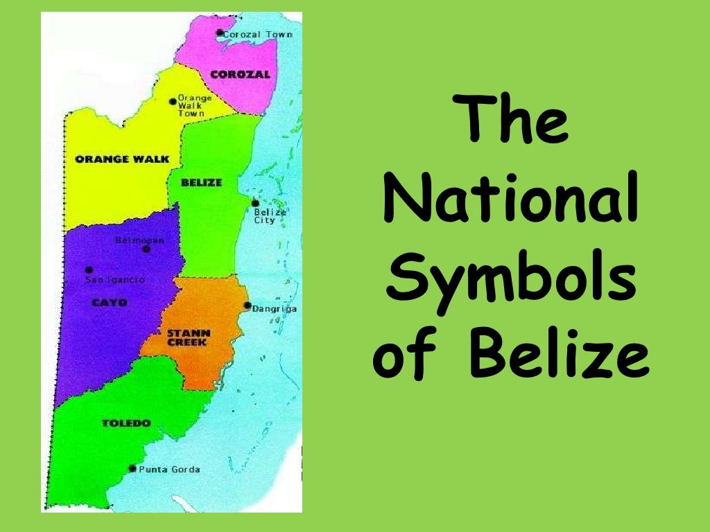 The national symbols of belize by mar moralez via slideshare shows pictures and details about the national symbols of belize biocorpaavc Image collections