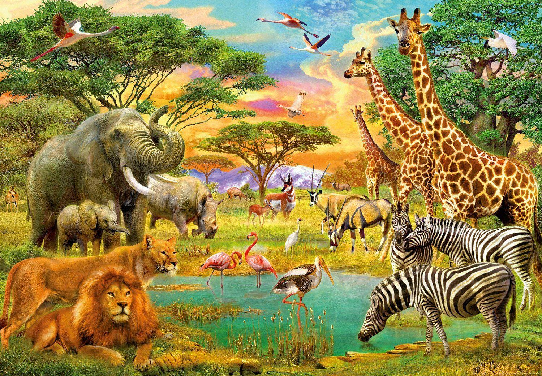 Afrika wohnzimmer ~ Amazon fototapete wilde tiere in afrika i größe