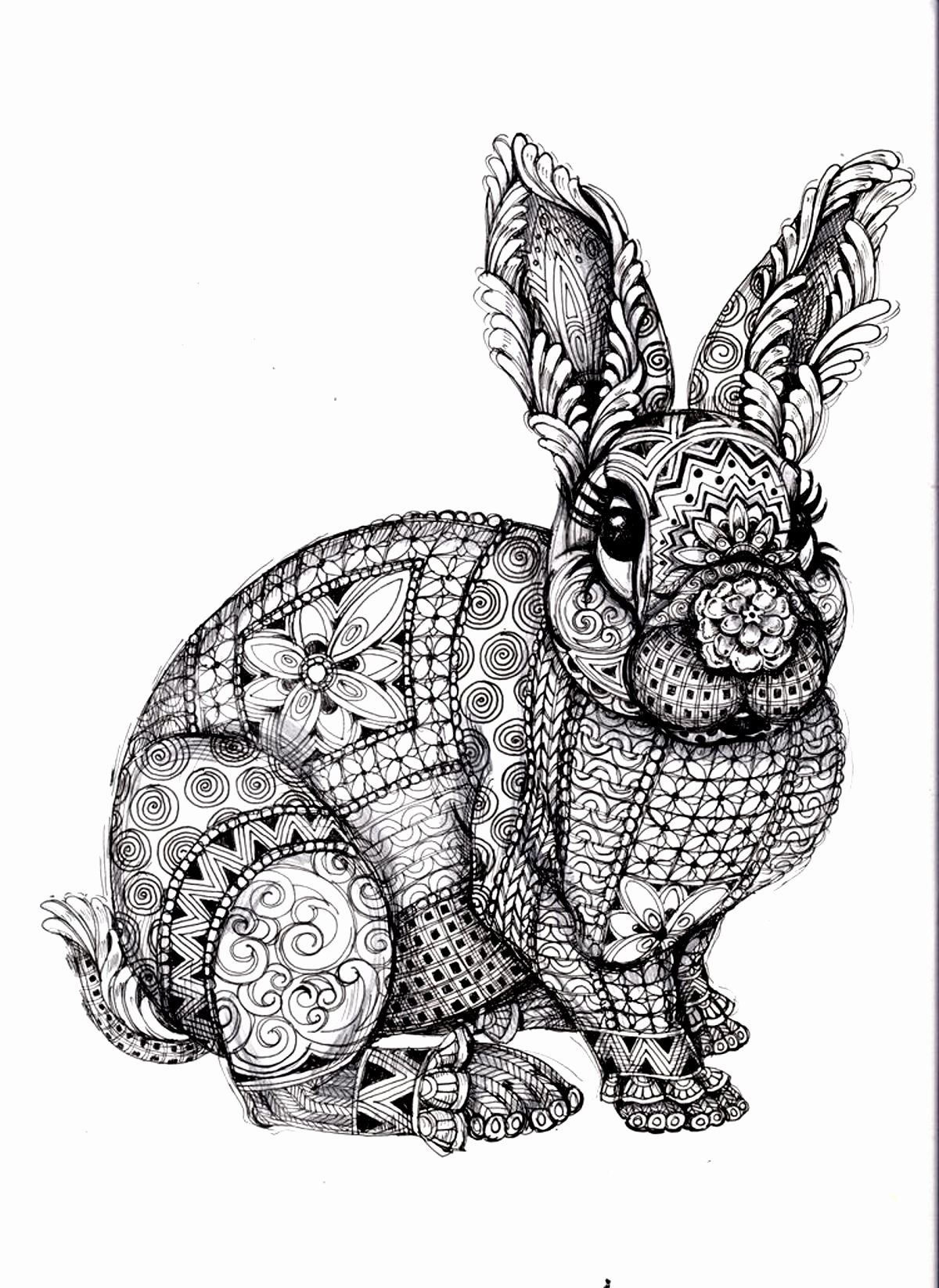 Coloring Pages Animals Hard New 23 Plicated Animal Coloring Pages Collection Coloring Animal Coloring Pages Mandala Coloring Pages Mandala Coloring