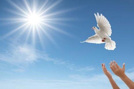 habría de subrayar una y otra vez, es suficiente para permitirle al Espíritu Santo utilizar cualquier situación para Sus propósitos e infundirle Su poder. For More Information http://un-curso-de-milagros.org/