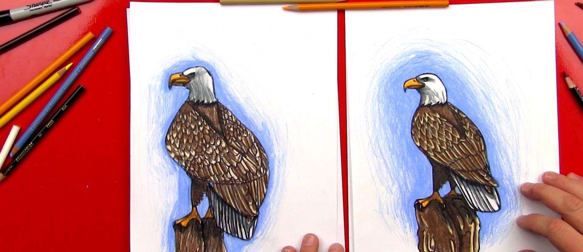 How To Draw A Bald Eagle Art Hub