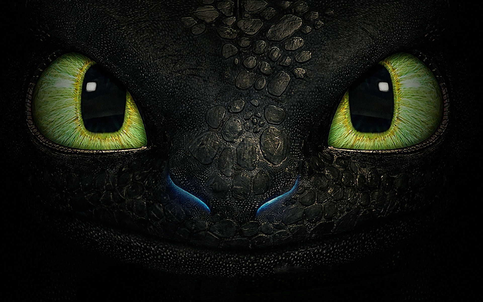 How To Train Your Dragon 2 Wallpaper Hd Collection How Train
