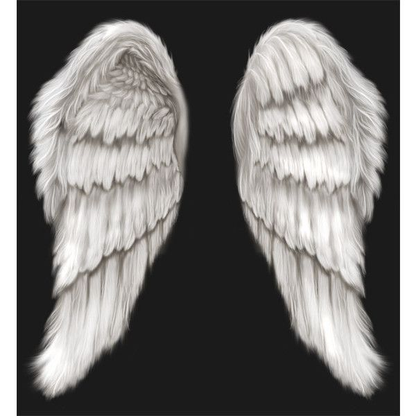 white angel wings psd