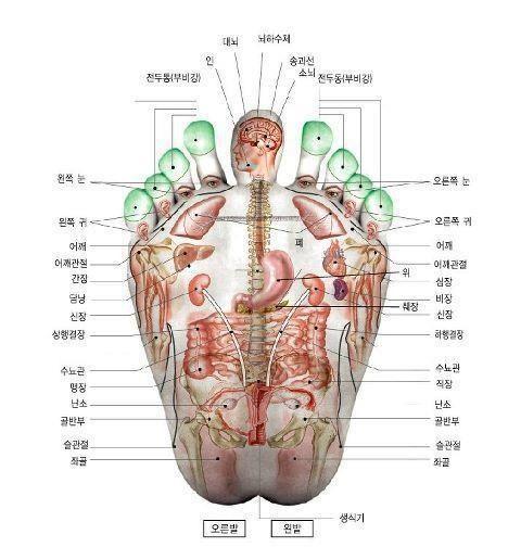 Acupressure points in feet by morecerv. | Acupressure