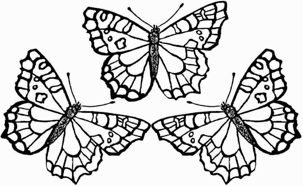 Coloring Sheets Butterflies Printables | Butterfly ...