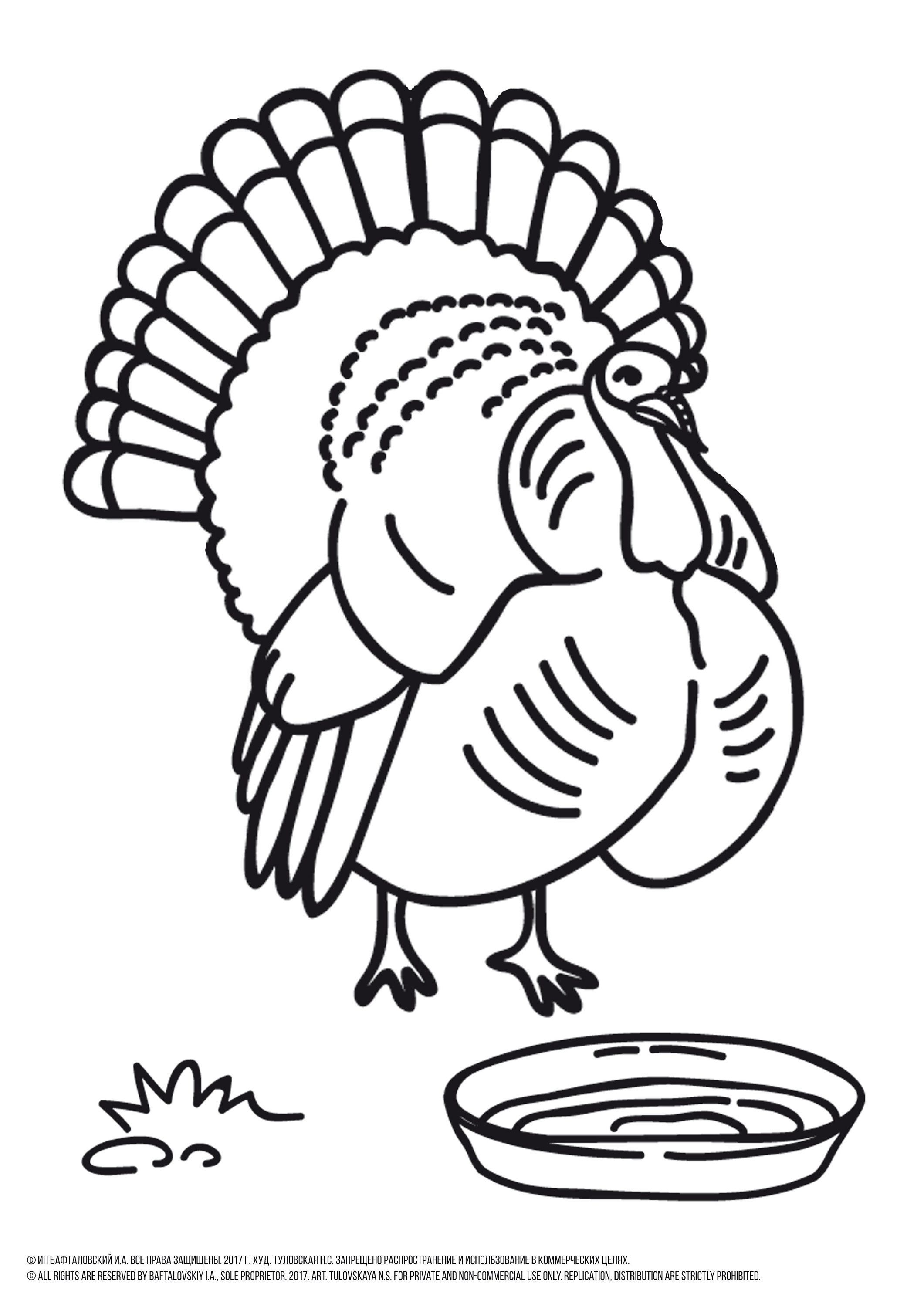 Turkey Coloring Page Turkey Coloring Sheet Turkey To