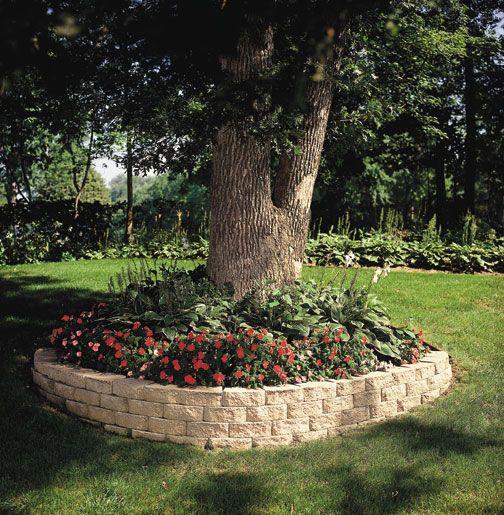 Landscaping Ideas Garden Walls: Large Tree Surround Retaining Wall