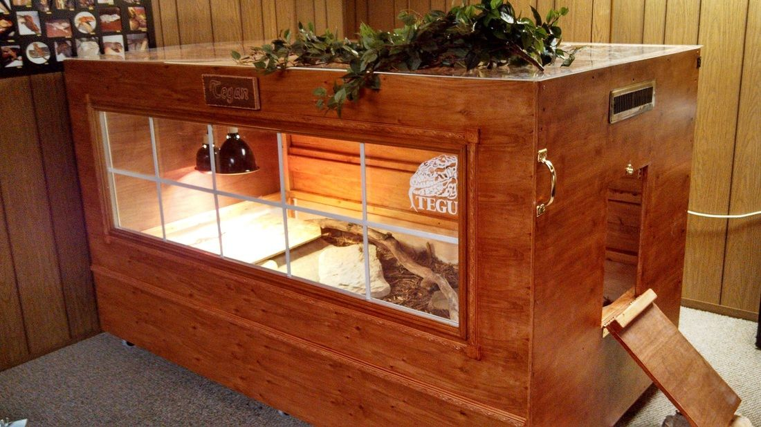how to build an enclosure tegus from around the world tank ideas