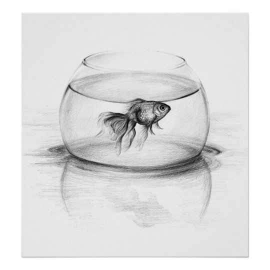 Goldfish in a bowl pencil art Poster print | Zazzle.com
