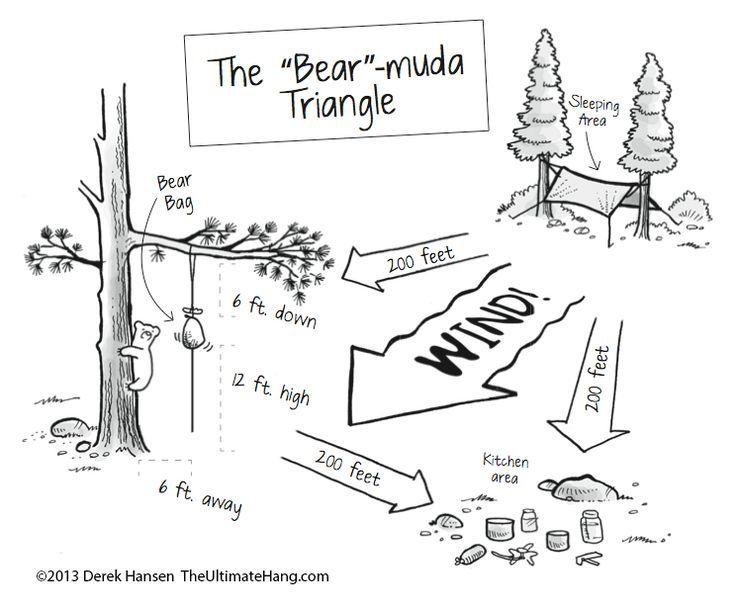 Bear Hang Diagram Illustration Of Wiring Diagram