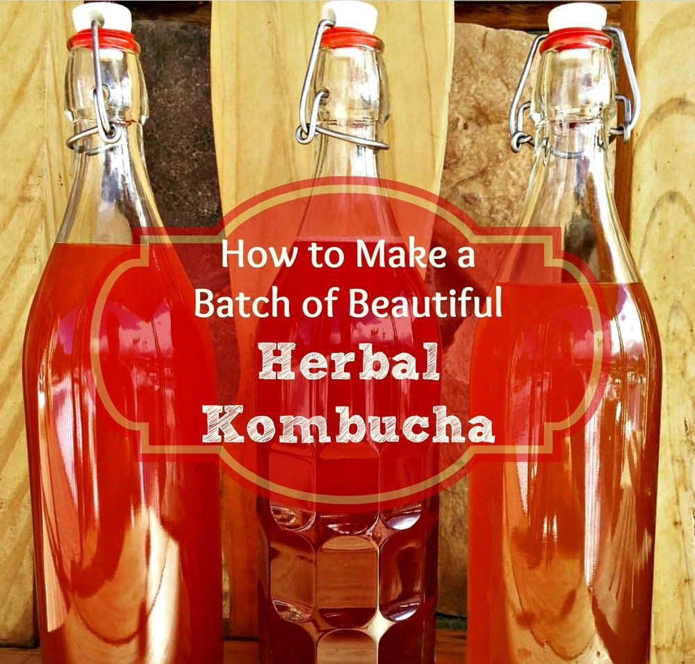 What Is Kombucha And How To Make This Delicious Fermented Soda All Posts Healing Harvest Homestead Kombucha Herbalism Colon Cleanse