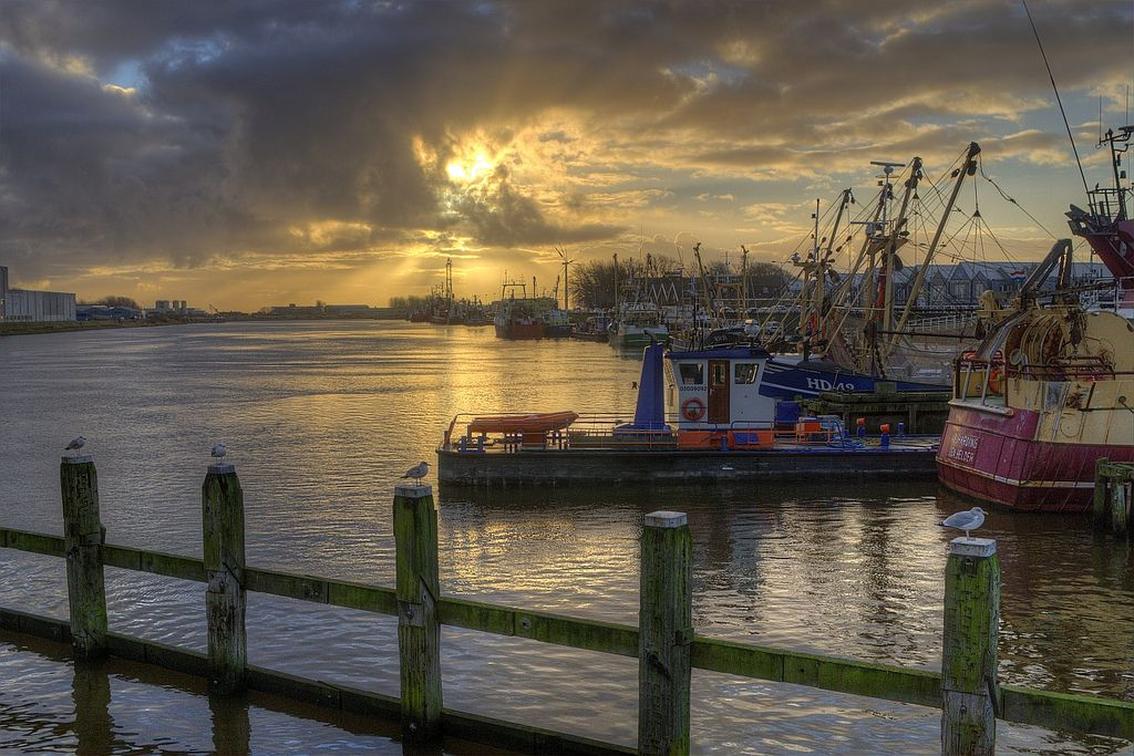 https://flic.kr/p/dGKSPP   Den Helder; Seagulls watching over the fishingboats   Took my camera with me on the way to work this morning. The bridge was free but thought this was nice to stop for. Took three shots and worked them out in photomatix (HDR and tonemapping).
