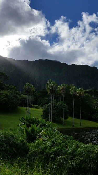 Oahu Hawaii, Botanical Gardens