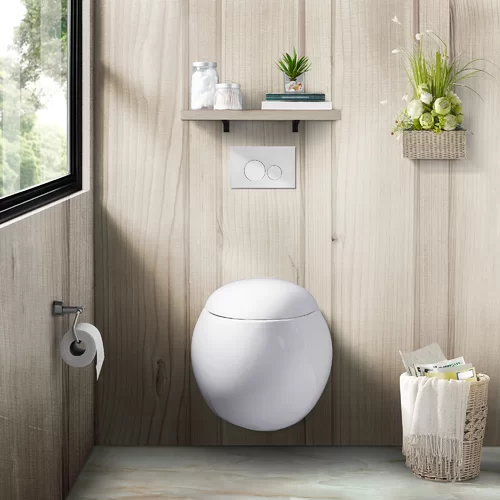 Plaisir Dual Flush Elongated Wall Hung Toilets Seat Included Wall Hung Toilet Wall Mounted Toilet Modern Toilet