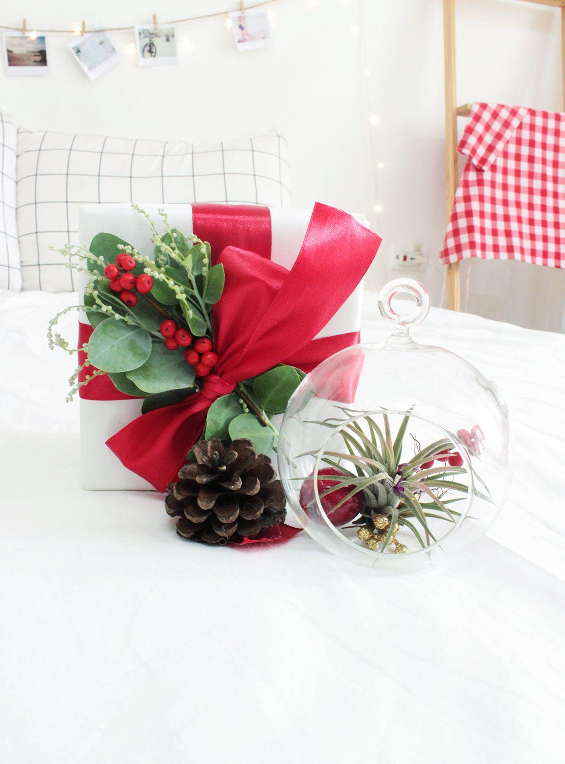 Christmas Gift Box 1 Airplant Christmas gift box