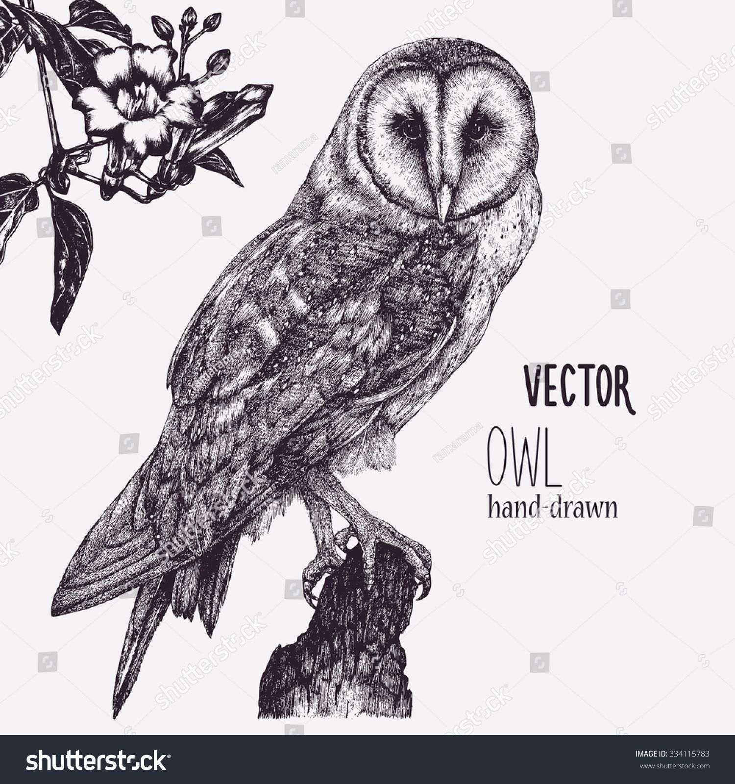 Image result for pen and ink chickadee stylized | create | Pinterest