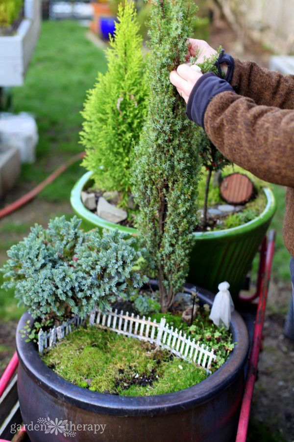 Garden Tour Fifty Shades Of Green: Garden Tour: A Full-Size Yard Filled With Magical