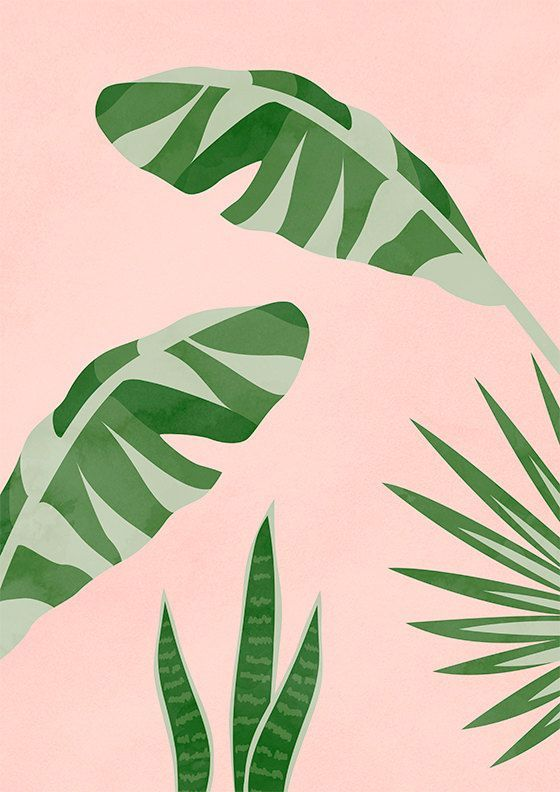 Printable Art Plants On Pink II Banana Leaf Print by
