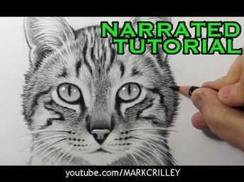 How To Draw A Cute Kitten Face Art Tutorial Video This Art For