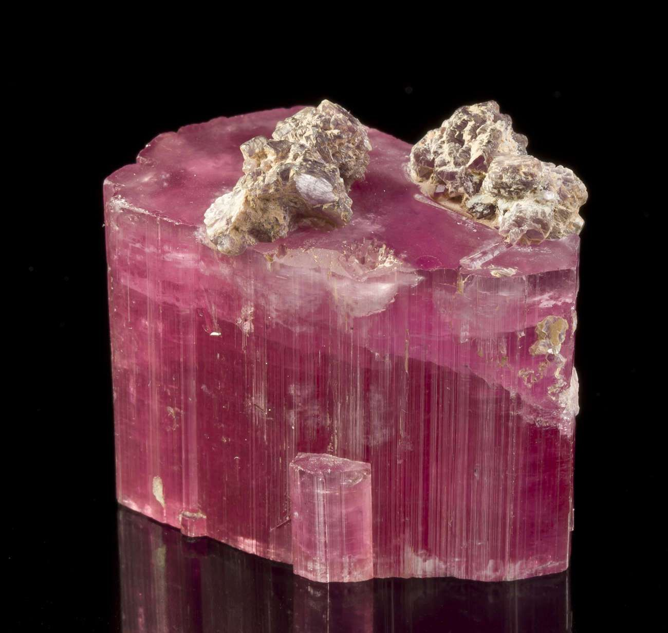 Tourmaline with Lepidolite - Tourmaline Queen Mine, Pala, California, USA. Very seldom do we see fine crystals of this ultra-hot-pink color saturation turn up again on the market, and then only out of old collections or museum deaccessions-