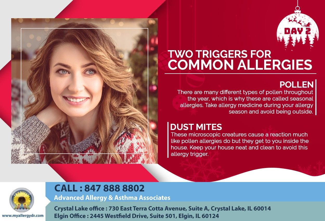 On The 2nd Day Of Christmas My Allergist Told Me About Two Triggers For Common Allergies Christmas Xmas Allergy Medicine Allergy Symptoms Seasonal Allergies