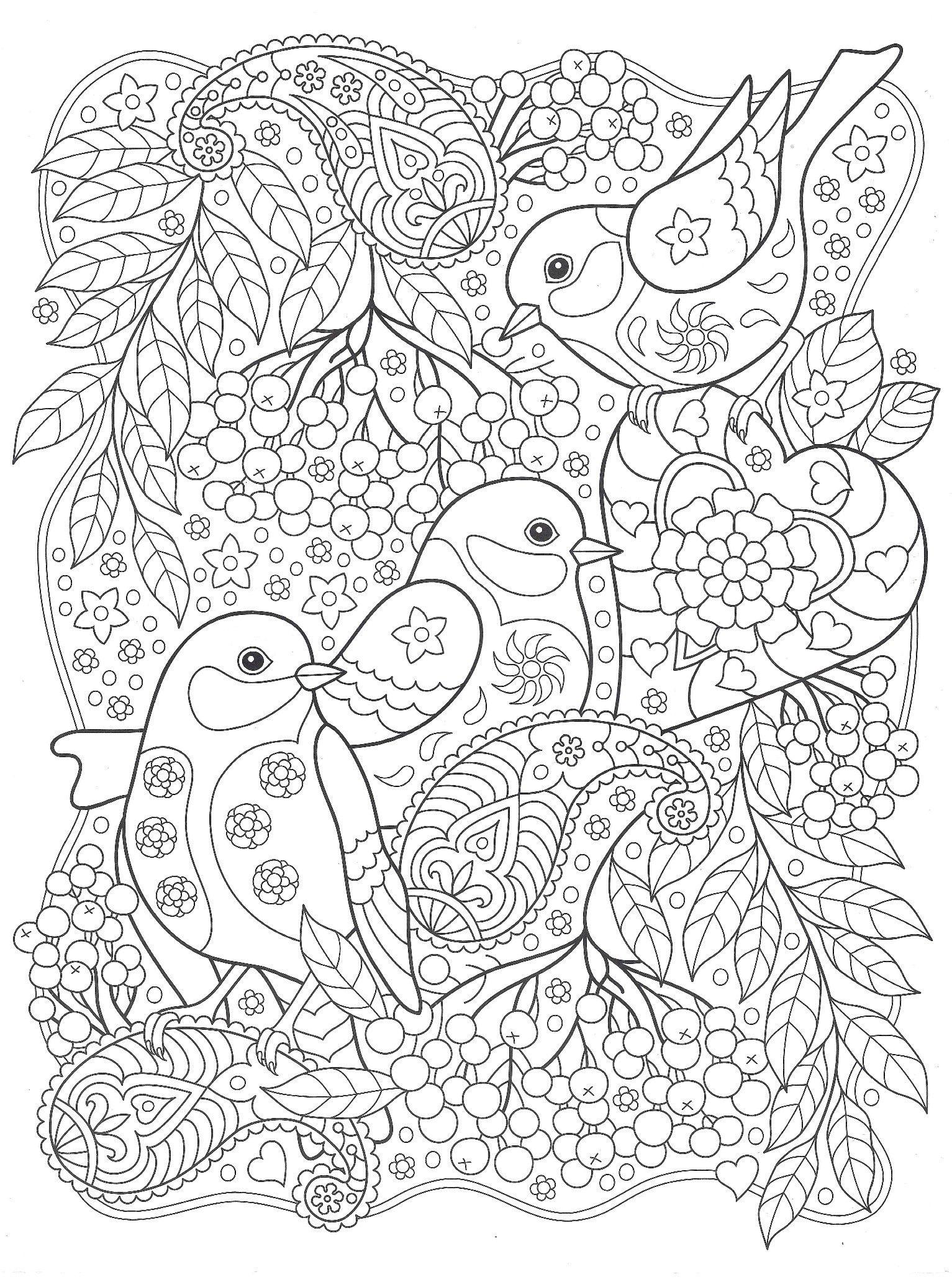 Раскраски «Птицы» - «Птицы с рябиной» | Раскраски мандала ...
