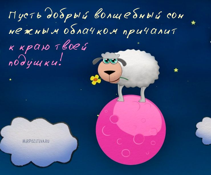 Картинки прикольные спокойной ночи подруги, днем рождения мише