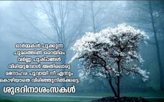 Malayalam Good Morning Images Free Download Morning Images Good Morning Images Good Morning Quotes
