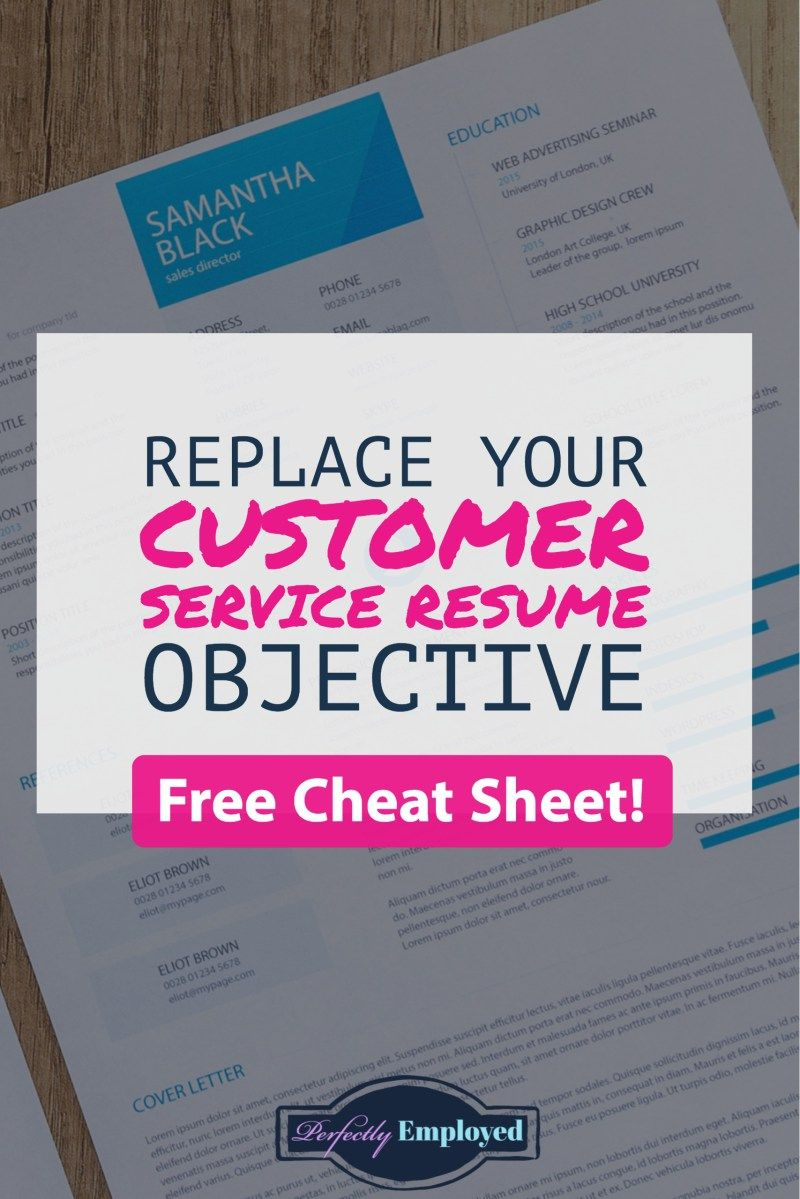 Customer Service Resume Objective Replacements Perfectly