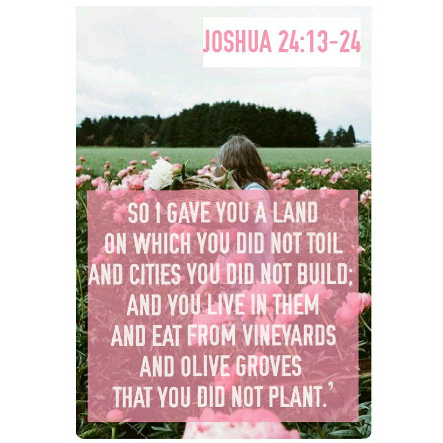 Joshua 24:13-24 | ○•✟Jơʂħυαɧ✟Jųɖɠɛs✟•○ | Pinterest | Powerful ...