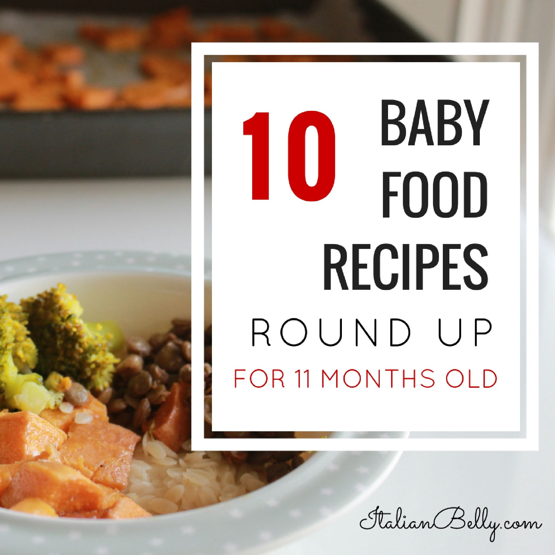 A Round up of Baby Food Recipes for 11 month old babies. Perfect for babies  that are transitioning from textured food to adult food.