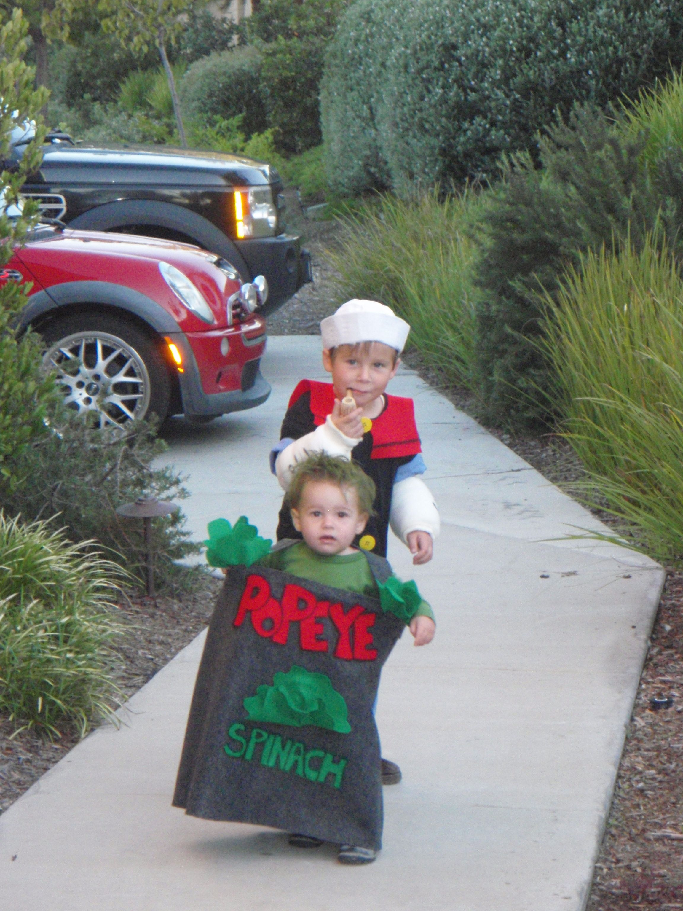 Popeye and his Spinach can costumes #halloween | I love making ...