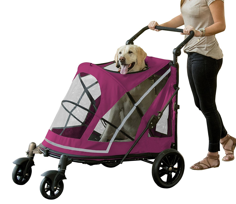 Pet Gear PG8850NZBBA Strollers Boysenberry Finish Pet