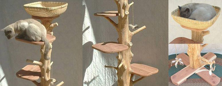 Natural Cedar Cat Tree