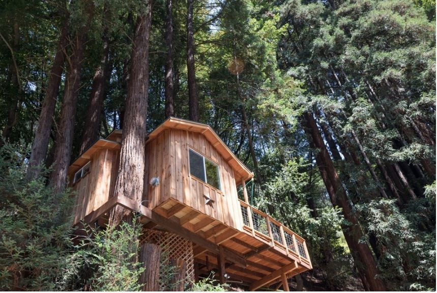 Tree House Rental Perfect For Romantic Getaway In The