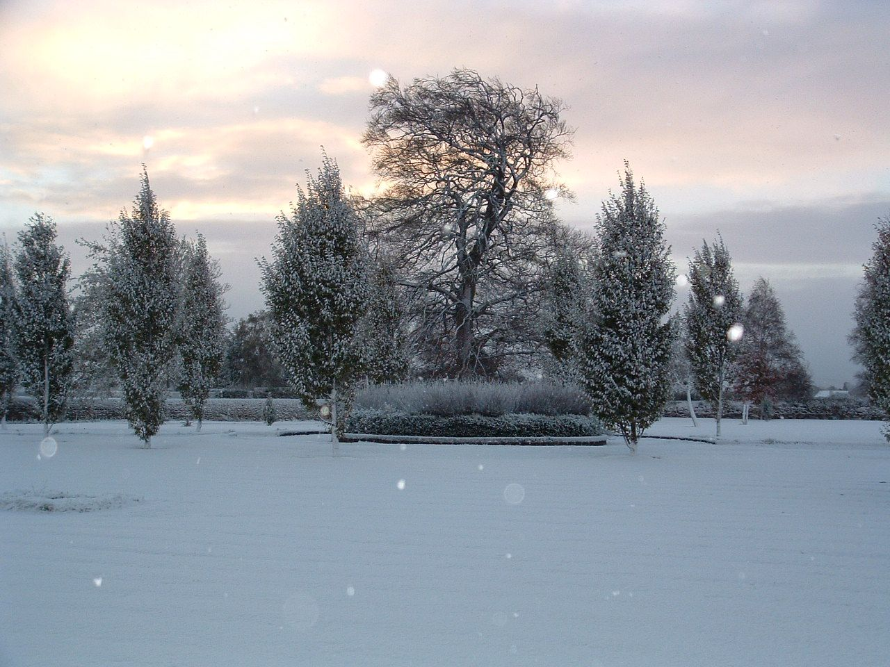 The Gardens at Barberstown Castle Castle, Snow, Winter