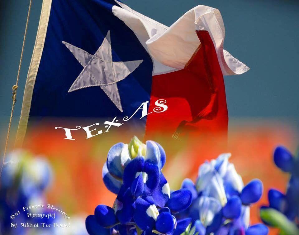 Pin by Joni Fogle on Texas Texas