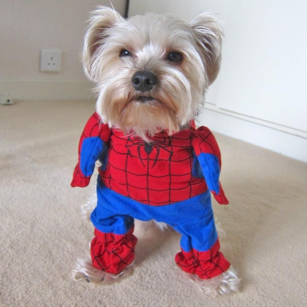 Spiderman Pet Cat Small Dog Costume Suit Superhero Small dog