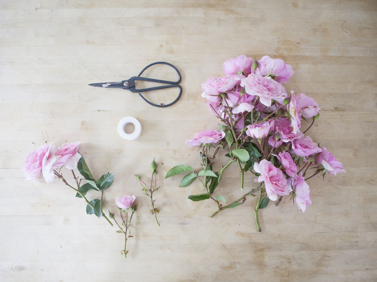 A diy wild rose wallpaper backdrop rose wallpaper backdrops and